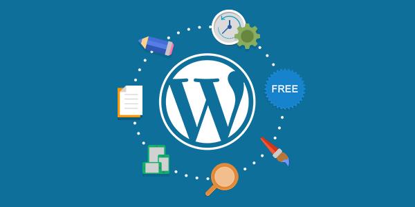 WordPress SEO ve SEO Eklentileri Nelerdir?