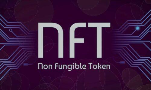 Paha Biçilemeyen Bu NFT Nedir? Nasıl Kullanılır?
