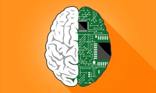 Beyin İle Bilgisayar İlk Defa Kablosuz Birbirine Bağlandı!